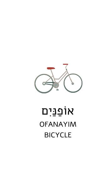 Tzuba Internship Positions – Kibbutz Ulpan